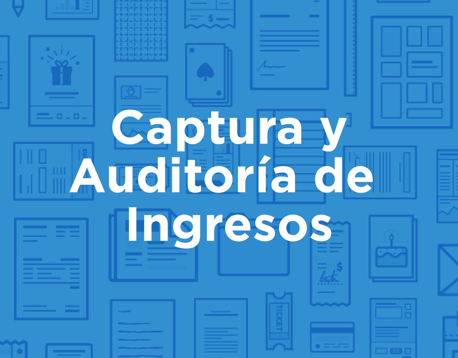 icon_products_spa_Captura-Auditoria-Ingresos.jpg