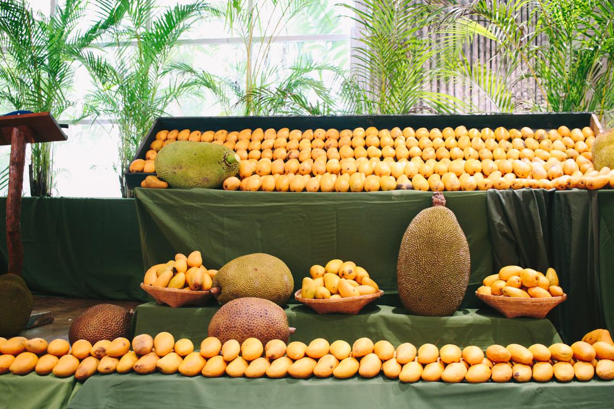mango-festival-fairchild-garden-31.jpg