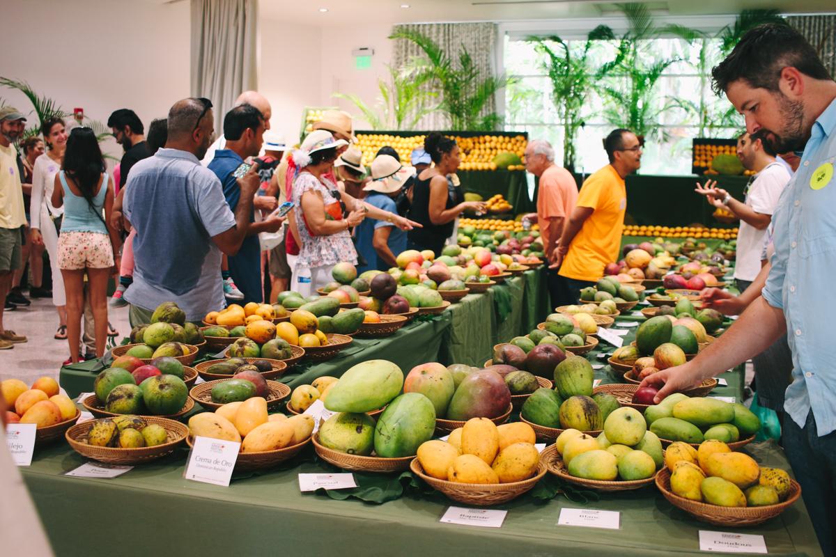 mango-festival-fairchild-garden-40.jpg