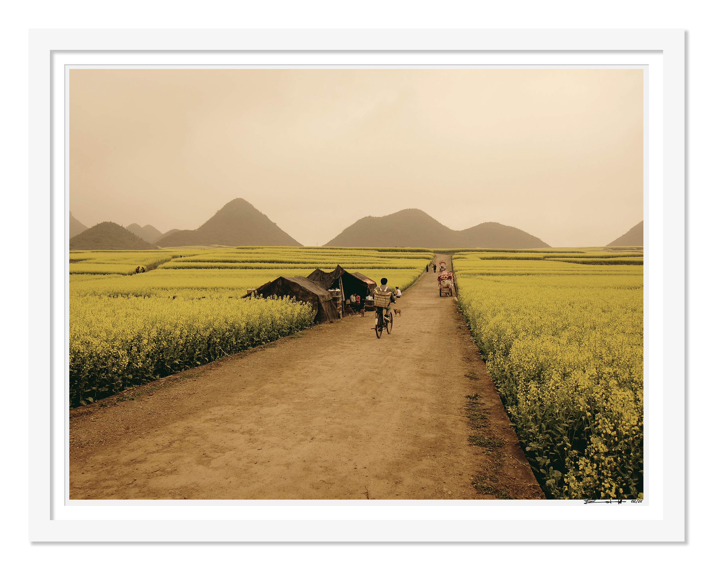LUOPING FIELDS YUNNAN limited edition print
