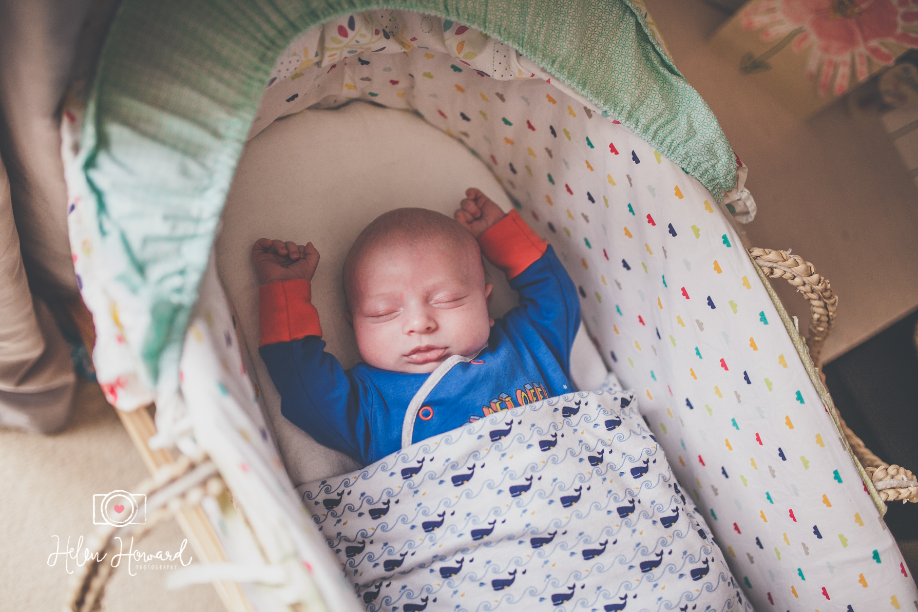 A sleeping newborn baby boy in his moses basket