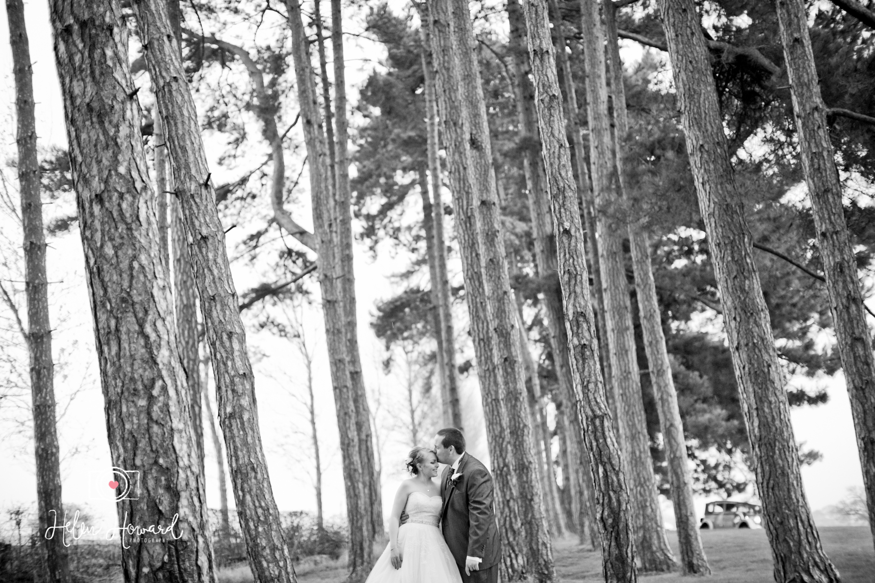 A bride and Groom in the woods at Packington Moor