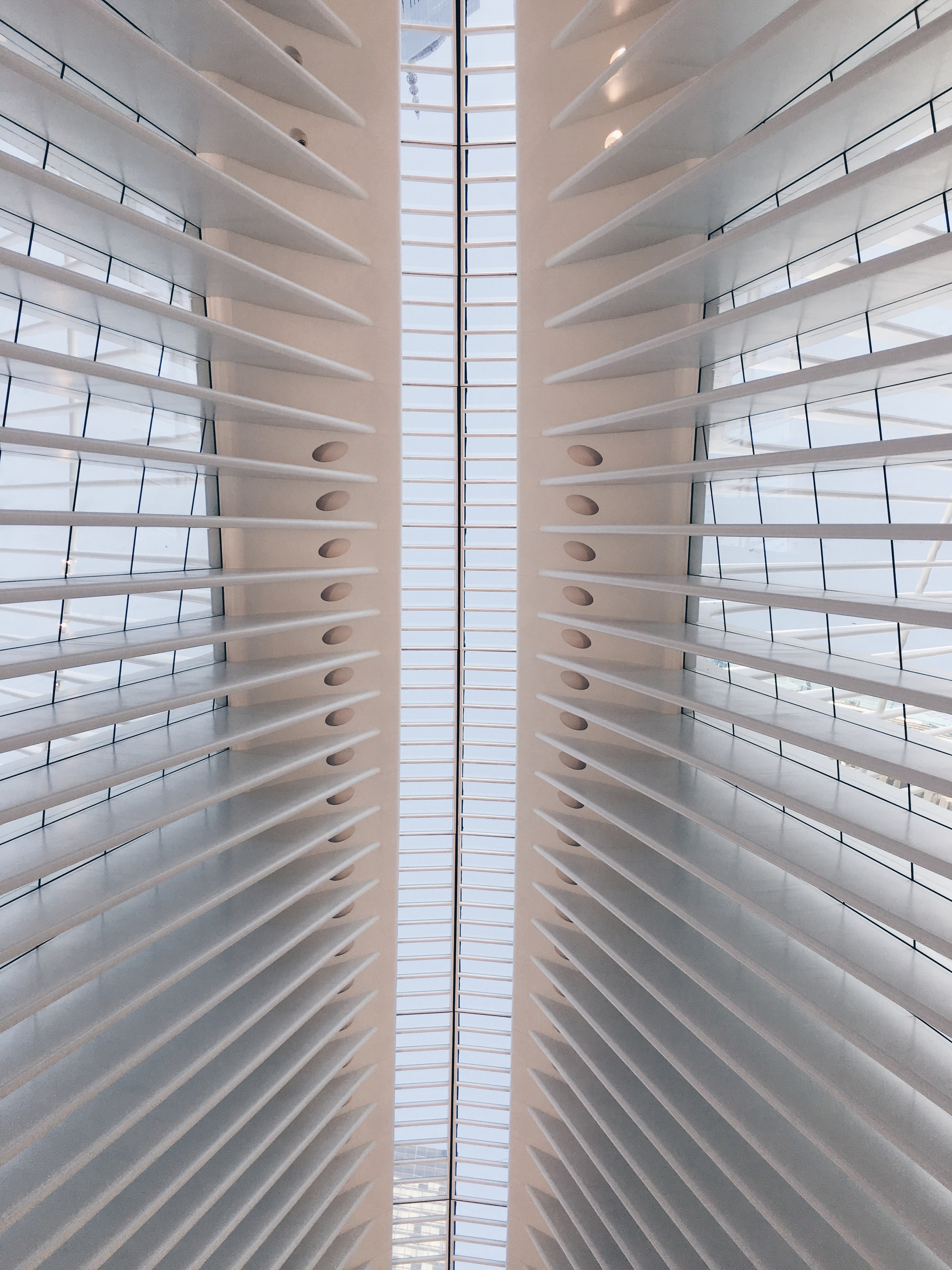 manhattan, new york   world trade center transportation hub by santiago calatrava