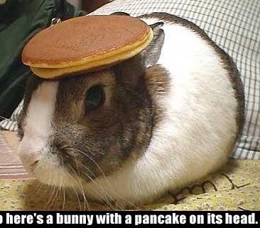 No pancakes were harmed in the making of this meme.