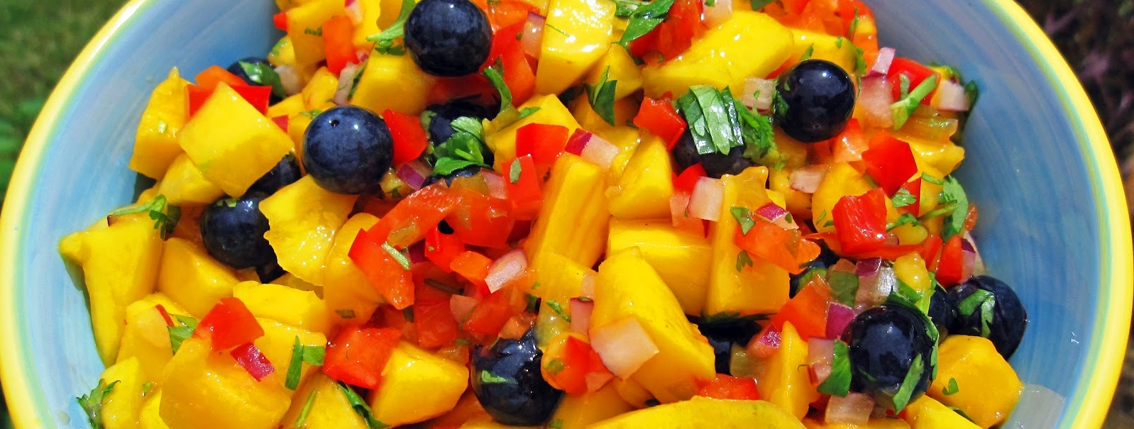 Mango Blueberry Salsa 003.jpg