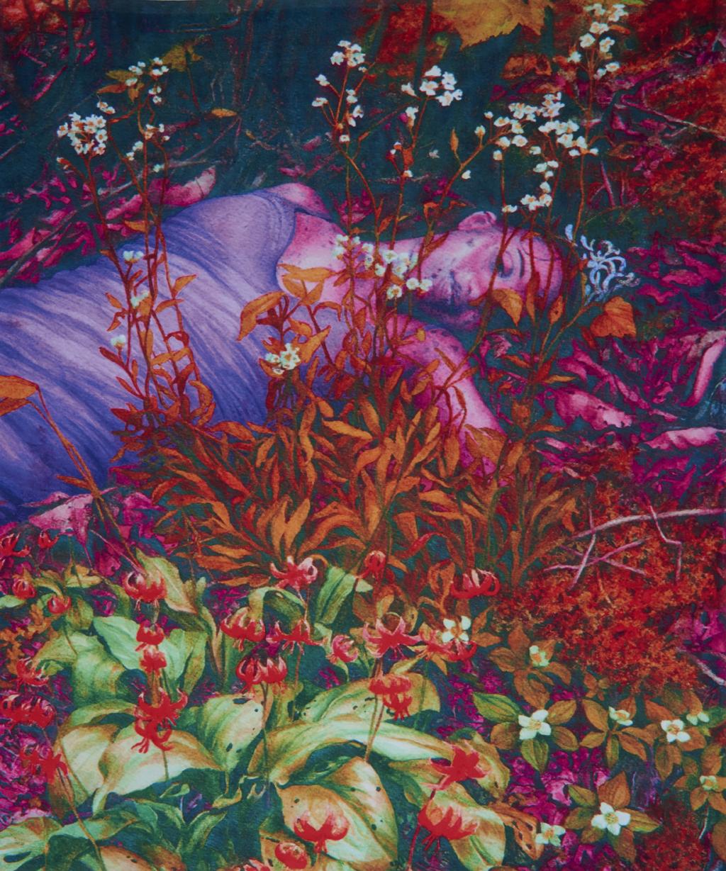 """Sleeping Beauty, 2015, 50"""" x 60"""" fleece blanket"""