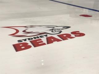 ice rink 20.JPG