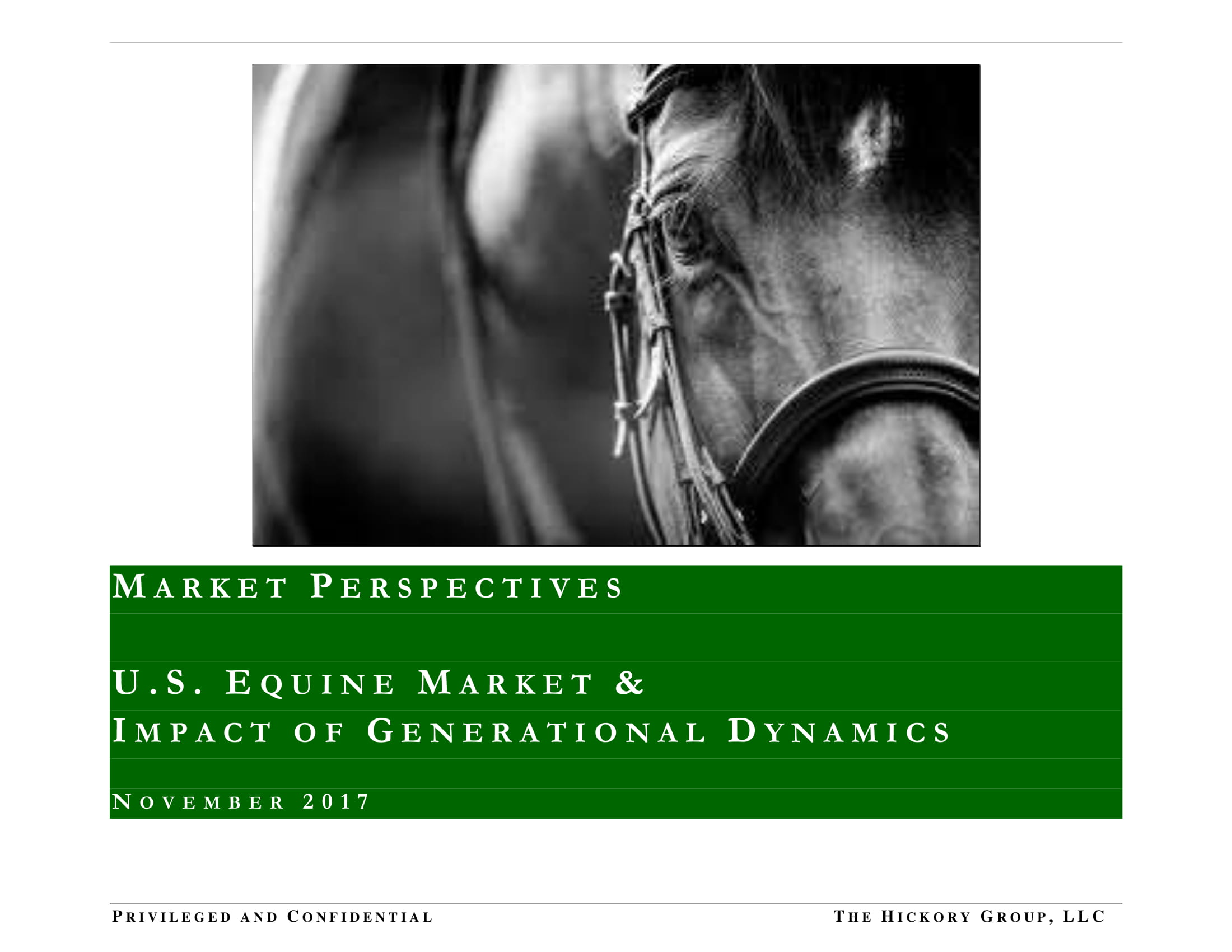 PUBLIC FINAL _Millennials and Equine Market Summary (15 November 2017) Privileged and Confidential-01.jpg