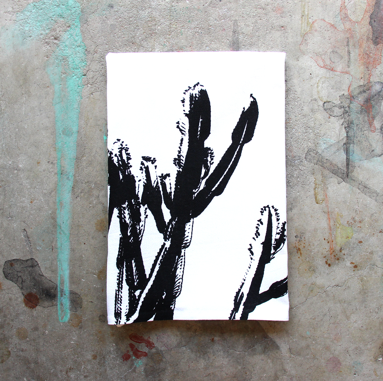 bw cactus.jpg