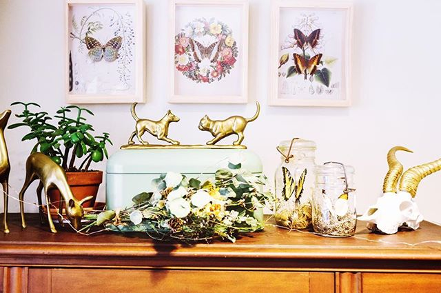 These are a few of my favorite things featuring @beetleflor @jennawadeonparade @huntingwithjake @love.furniture @home.coming @jenchanyi #insects #homedecor