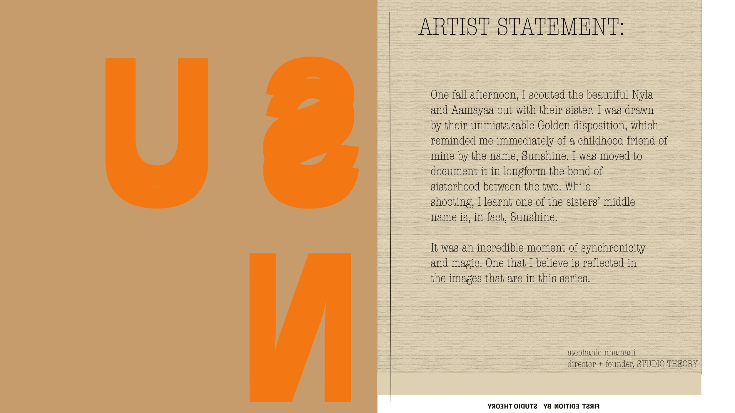 SOTS ARTIST STATEMENT 001.png
