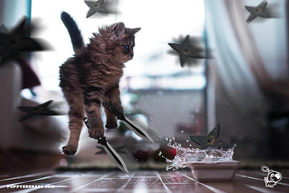 Breakfast Ambush!
