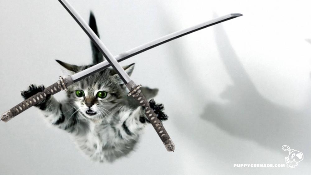 Attack form!