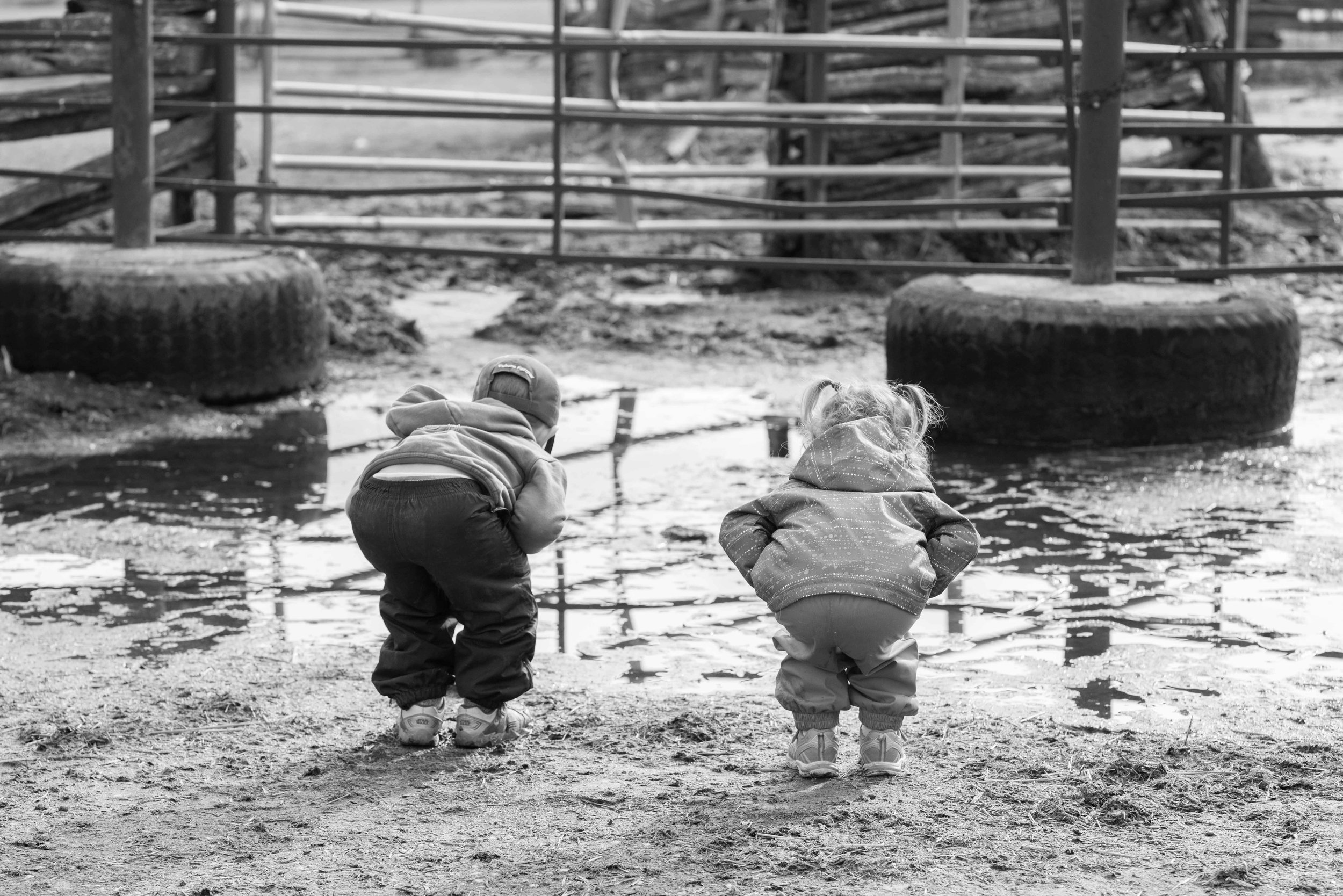 holly-mcfarlane-farm-kids