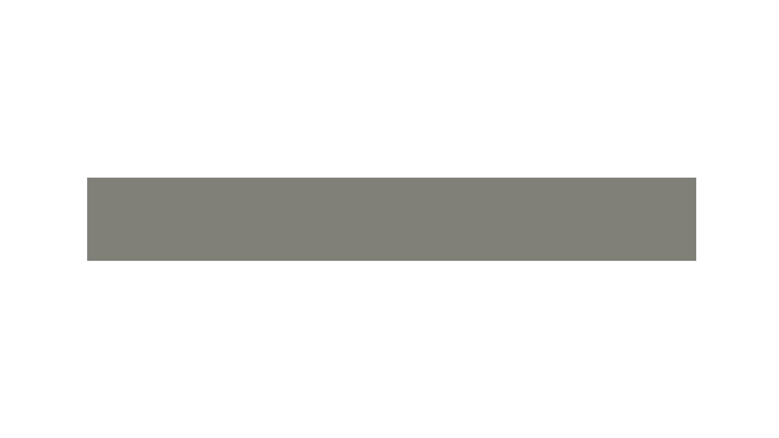 MetroVan-medium.png