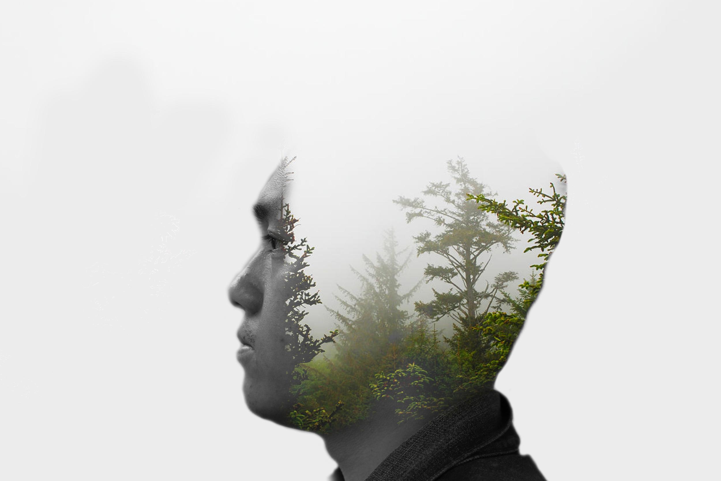 Song tree Douple Exposure...jpg
