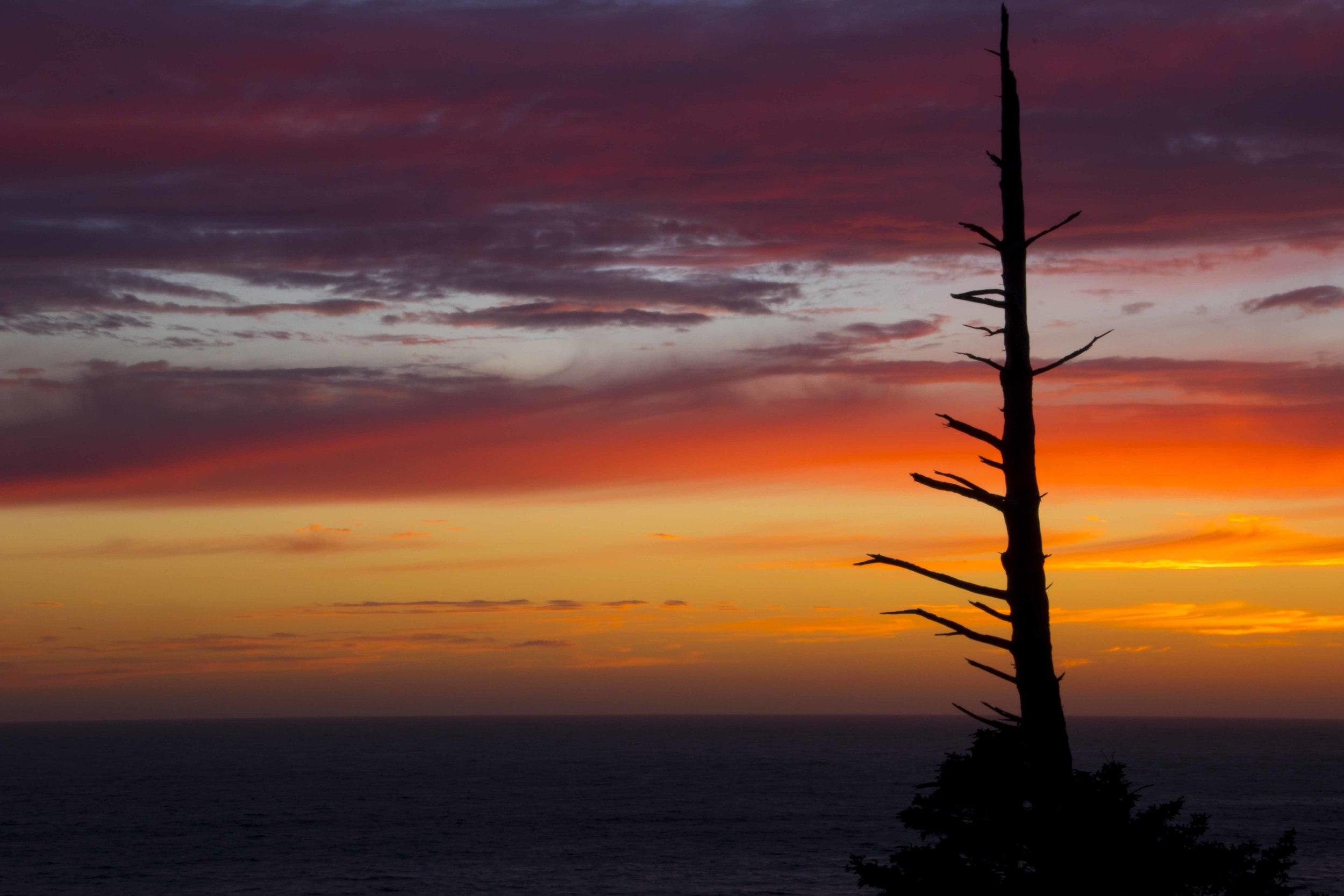 ottercrest sunset0A0A0850.jpg