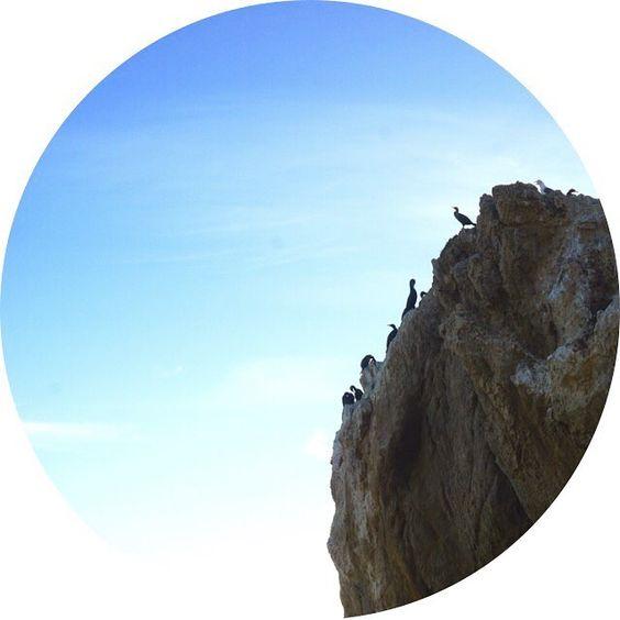 Cormorant's Cliff / Emanate Design