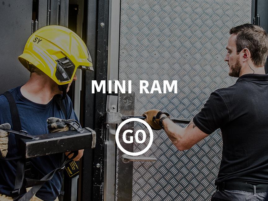 Mini Ram Small Box
