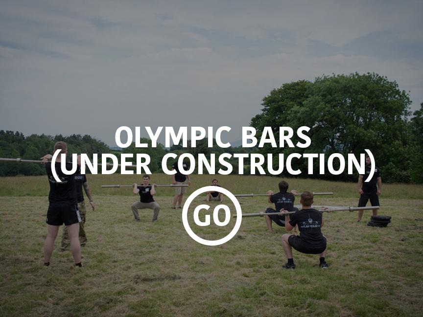 Olympic Bars Small Box