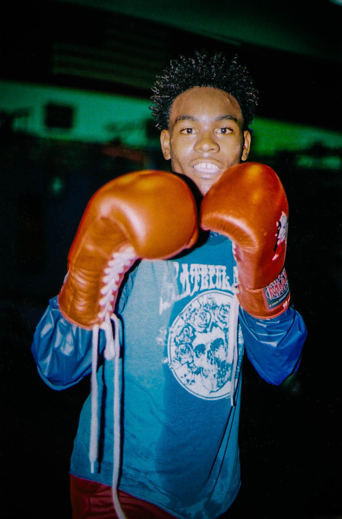 Boxer, 2016