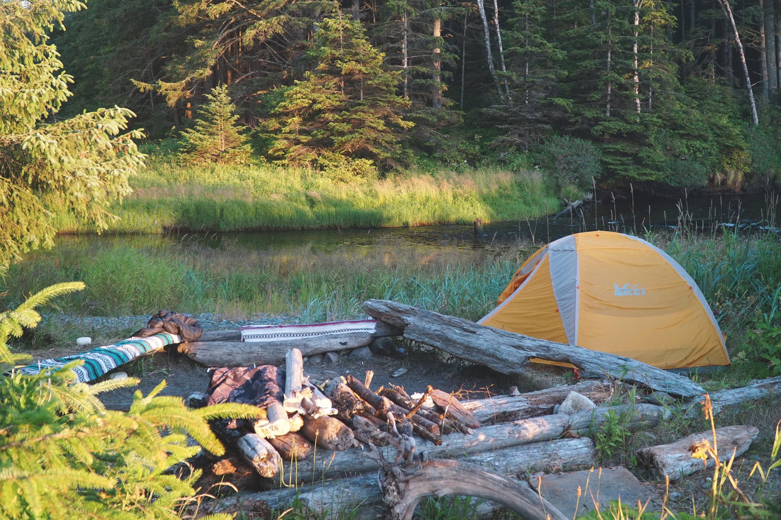 REI Half Dome 2 Plus Tent Review Washington State