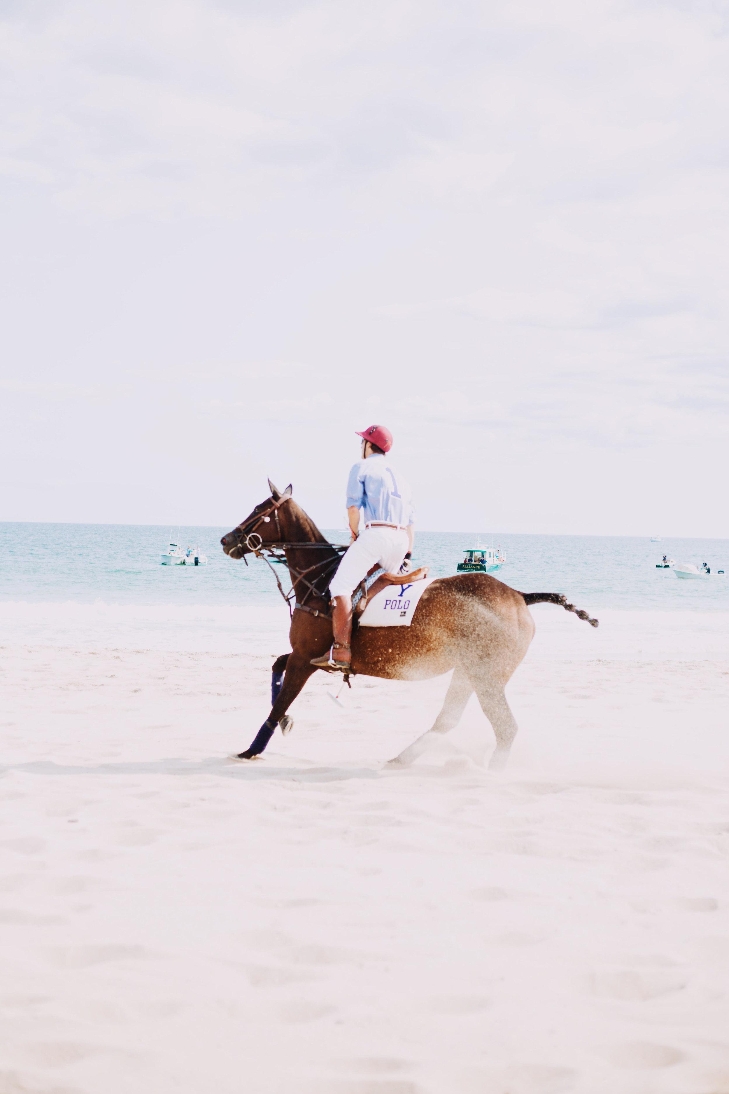 beach_polo_2