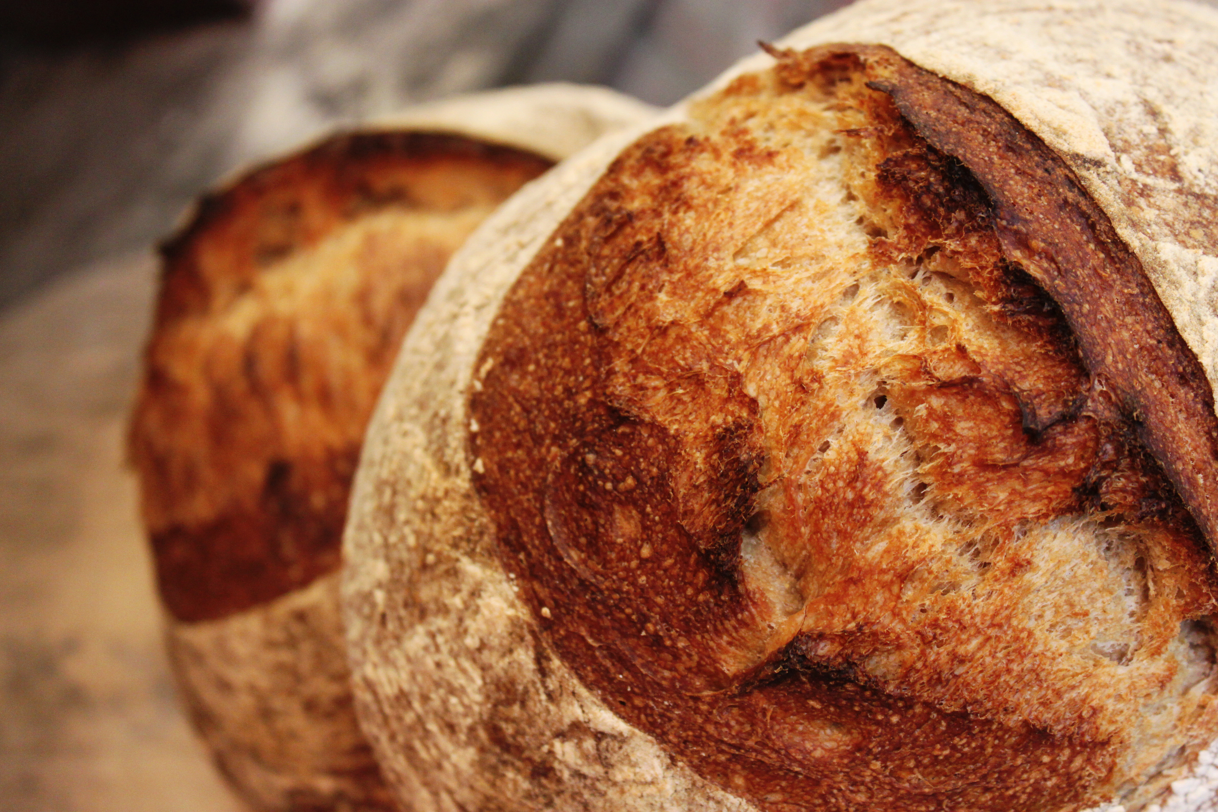 Bread loaves large.jpg