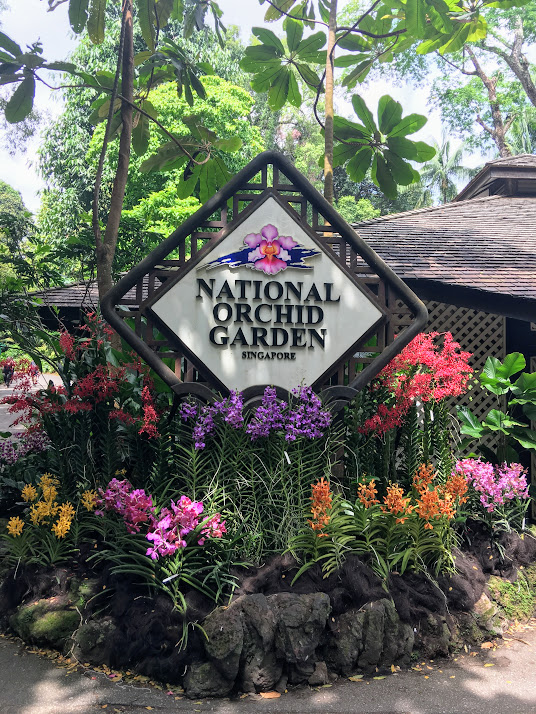 National Orchid Garden Singapore.JPG