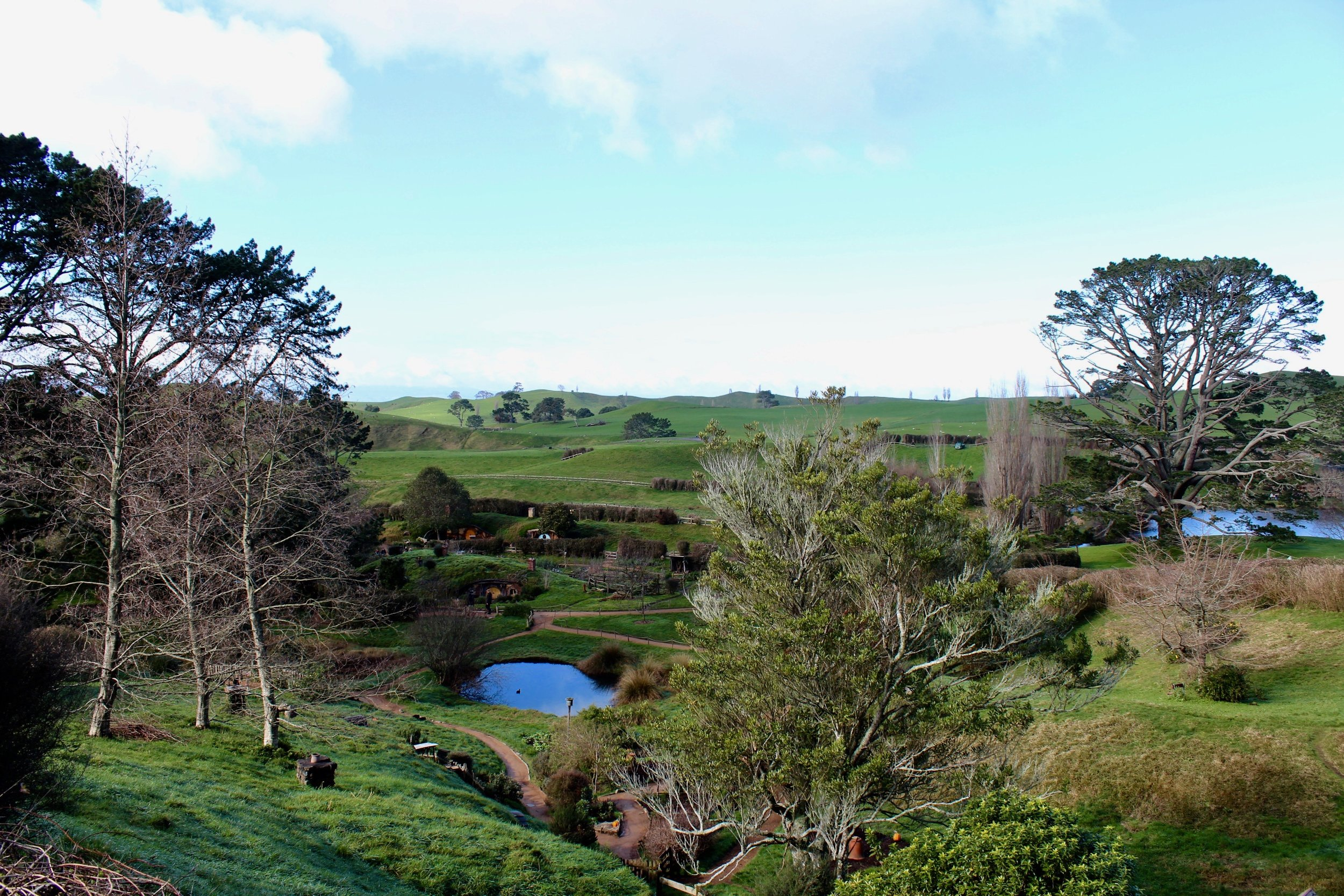 Hobbiton's rolling green hills