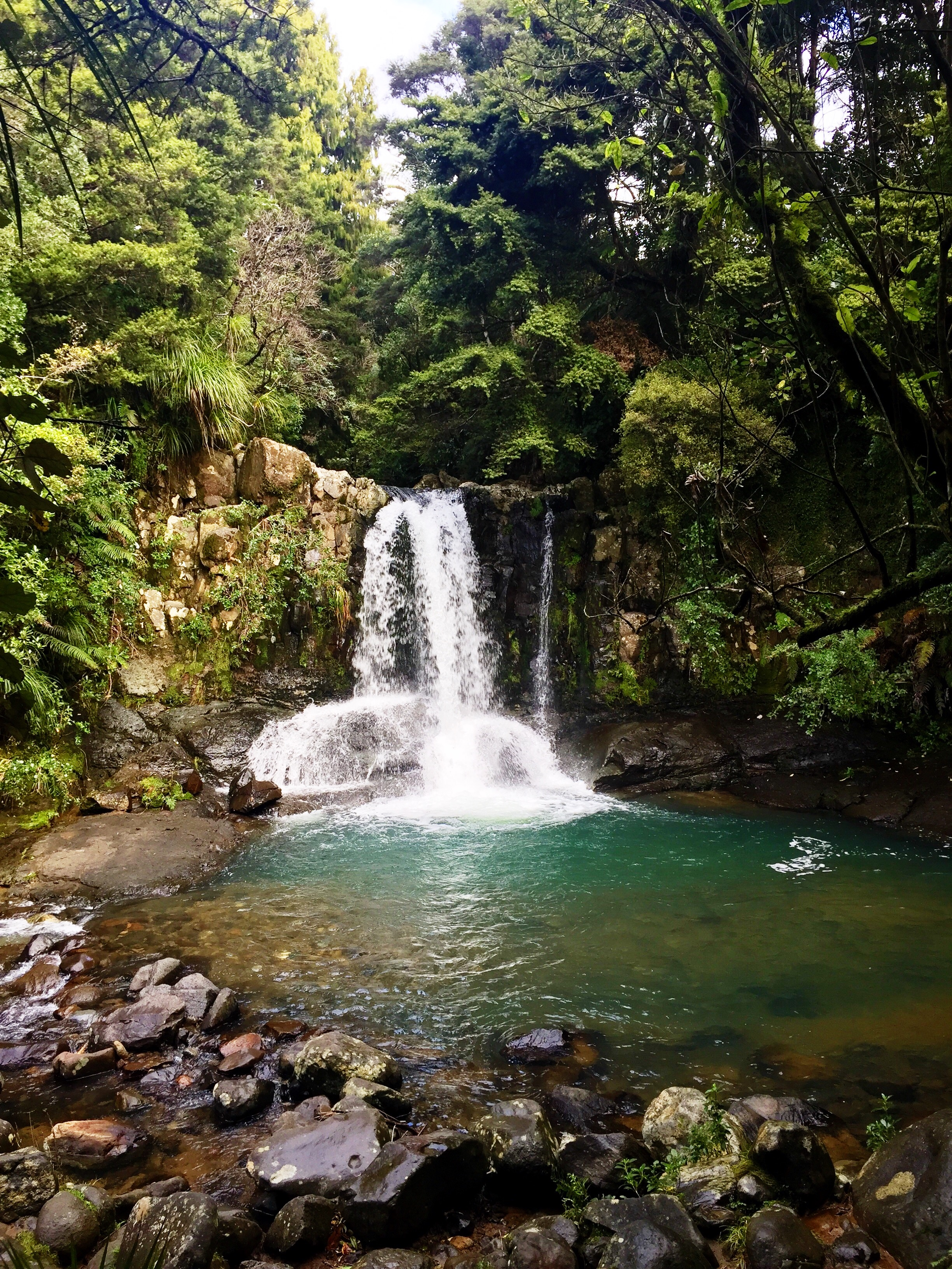 I found this waterfall on a pitstop while driving around the Coromandel Peninsula