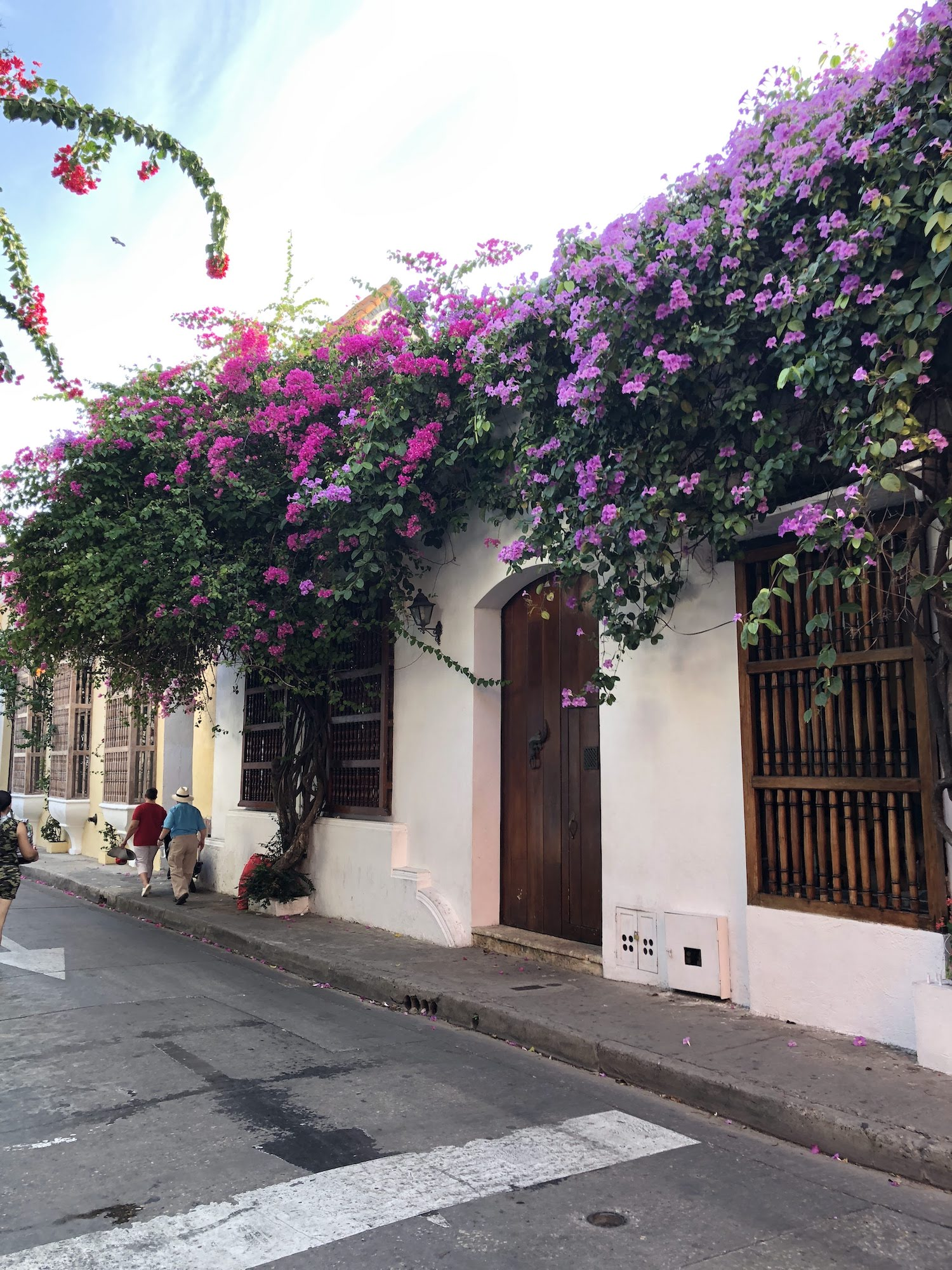 Flowers creep over rooftops and balconies on nearly every street