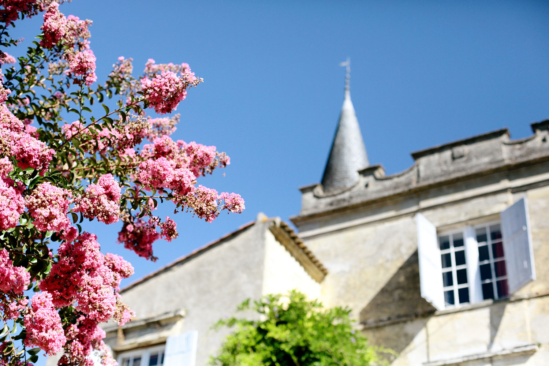 destination wedding in Bordeaux France
