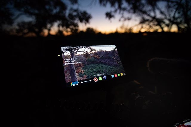 We've been getting a lot of questions about what cameras we use in the field for filming our hunts.  Here you go, we film with the Sony A7sii for a couple of reasons.  1.  The obvious quality it puts out and 2, low light performance. This is an unedited shot from this evenings hunt.  The camera was at 80,000 ISO and notice the food plot.  Never again be called off a deer by a cameraman because he's out of light.  Hope this was helpful.  We appreciate your feedback!!! #sonya7sii