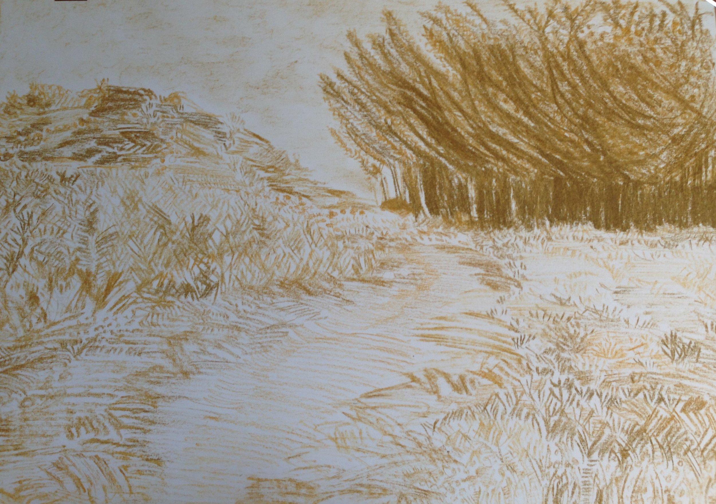 Melville Koppies I (2014). Sandstone on paper. A4