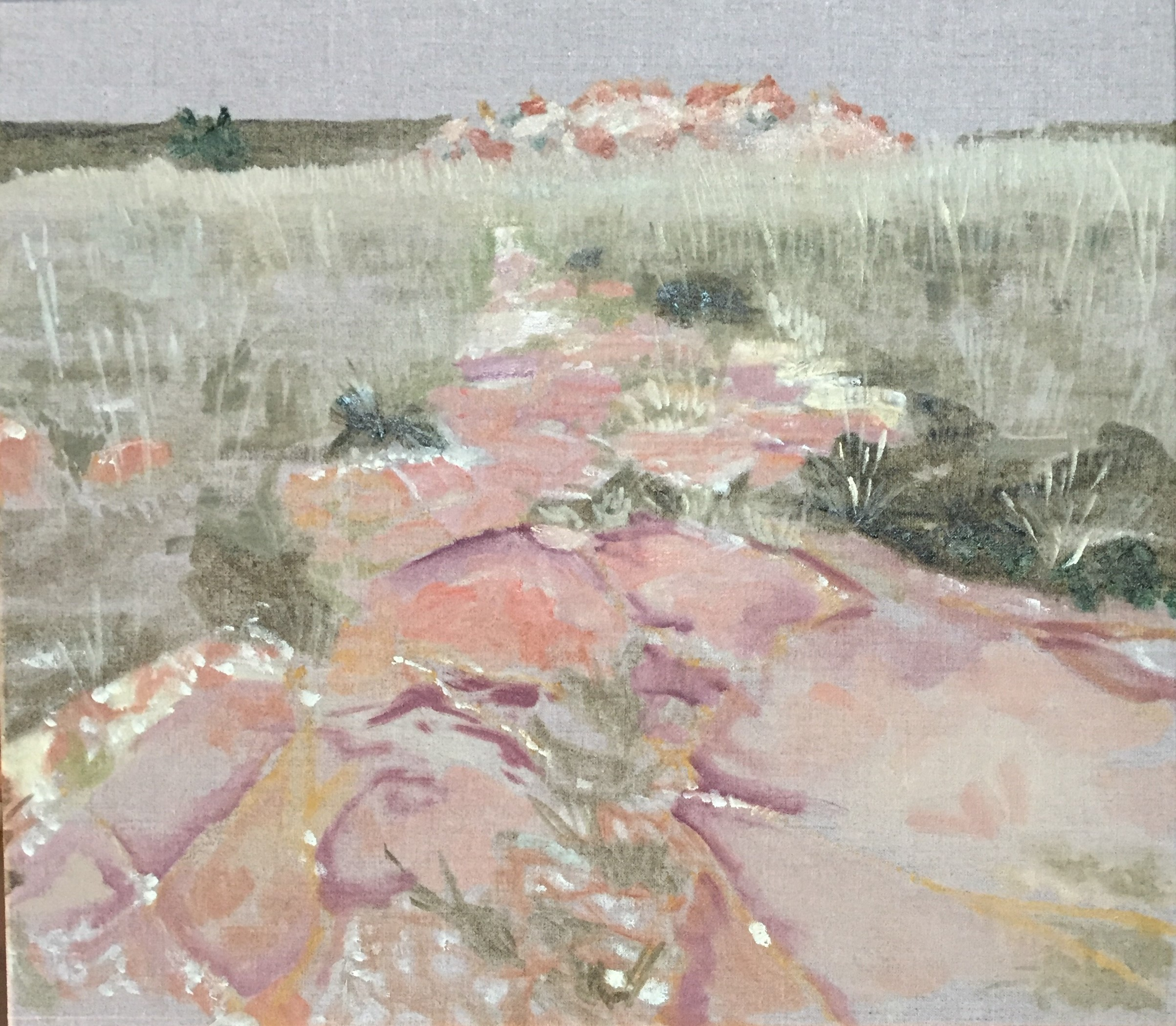 Pink Path, Melville Koppies East  (2018), oil sketch on sized Belgian linen, 35 x 45cm.