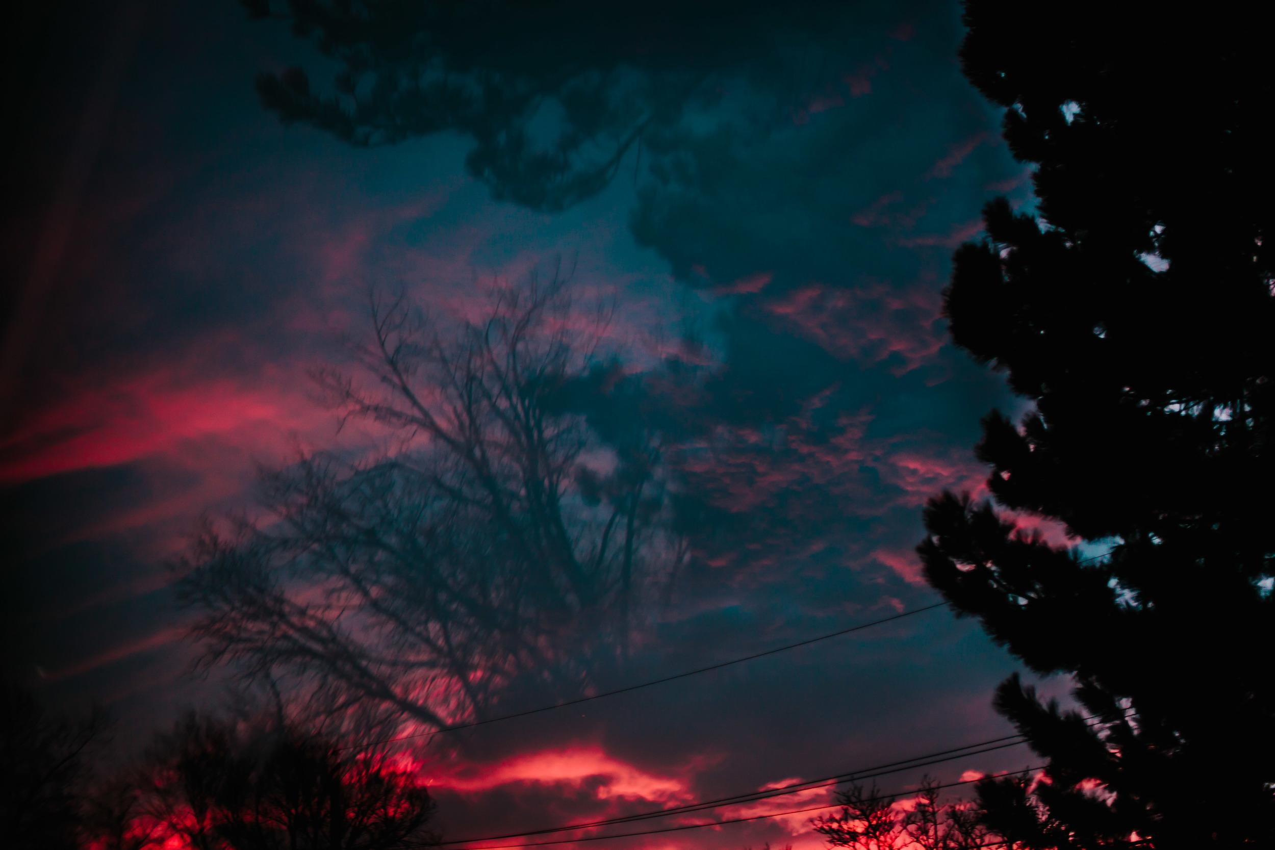 backyard experimentations-3.jpg