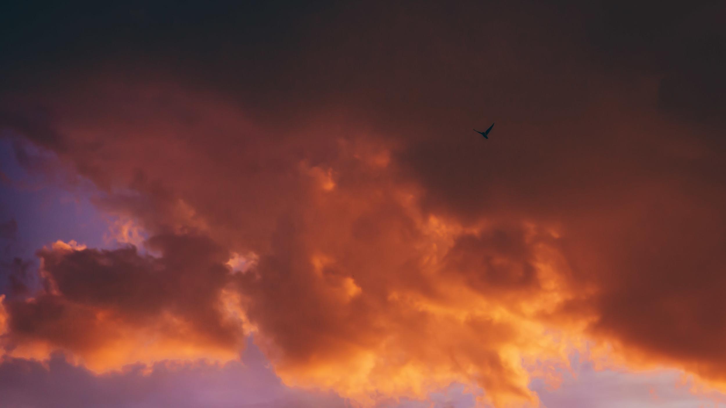 LOOKOUT sunset blog-11.jpg