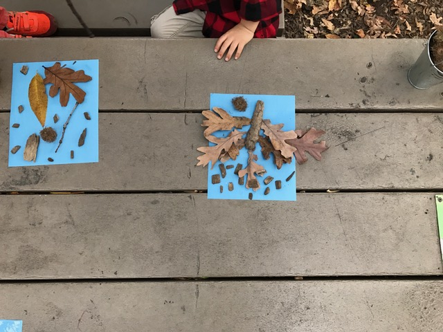 Creating nature sun prints helped us celebrate our beautiful sunny day. The children discovered that after they set out their patterns on the photo paper, the sun did most of the work!