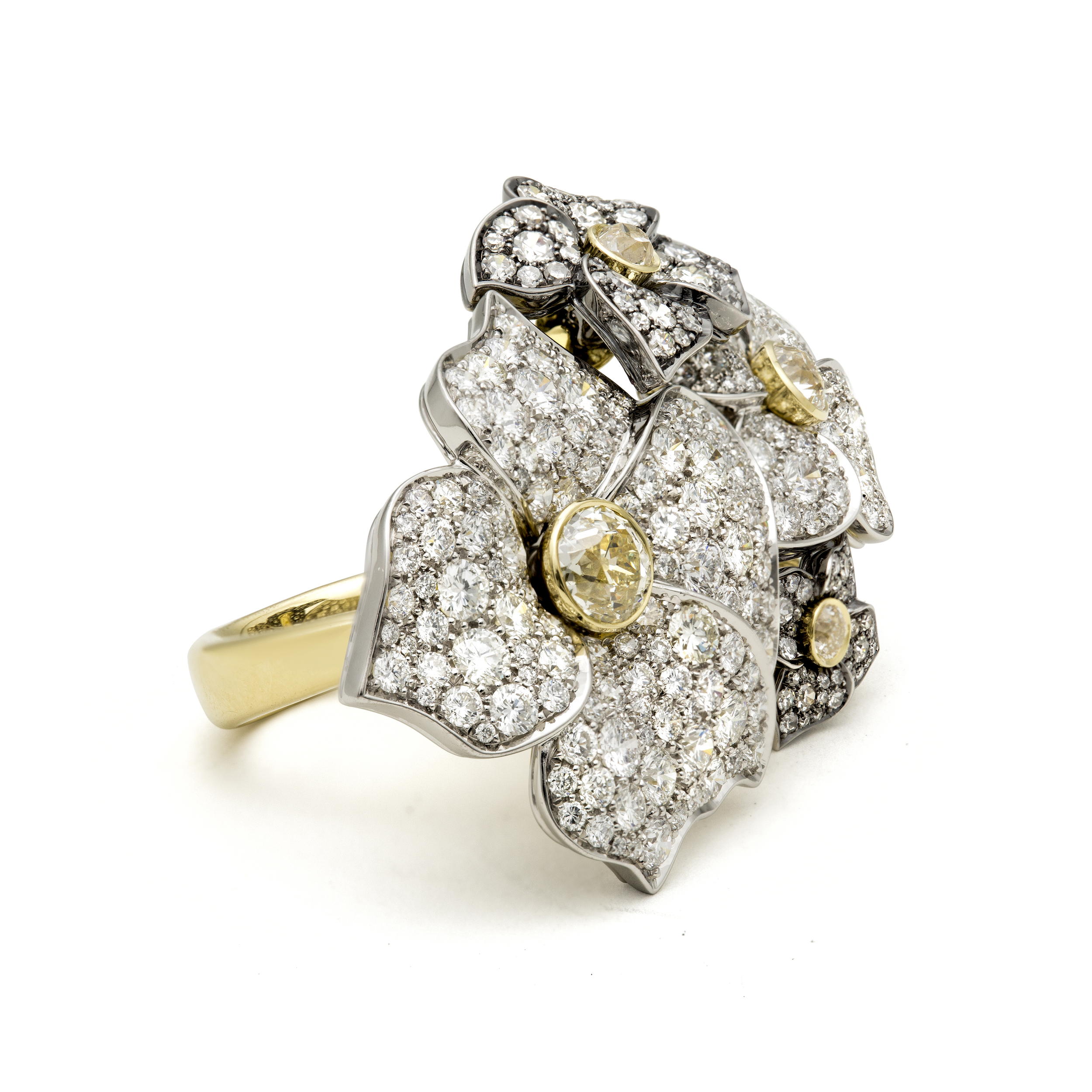 HS110 - Hail Storm Fiore Ring - Side View - HR.jpg