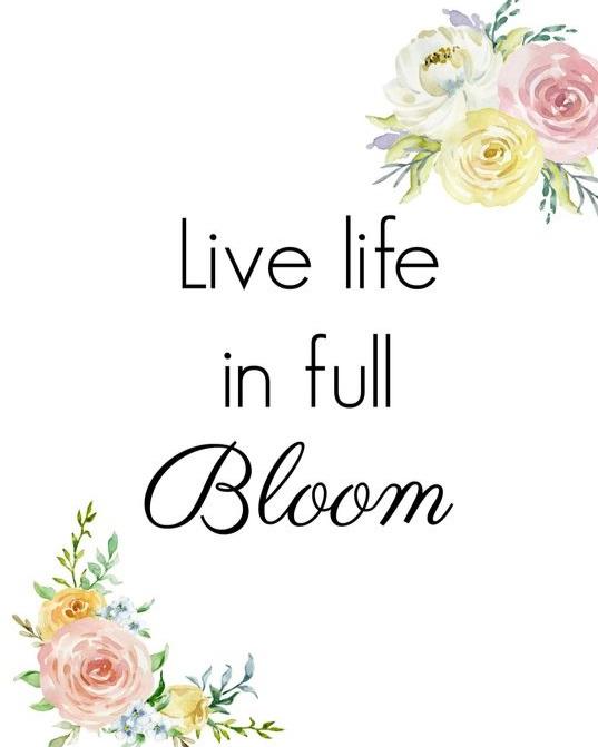 life+in+full+bloom.jpg