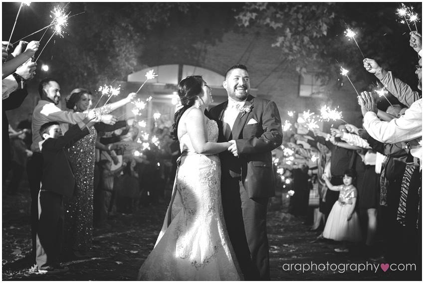 San_Antonio_Wedding_Photography_araphotography_104.jpg