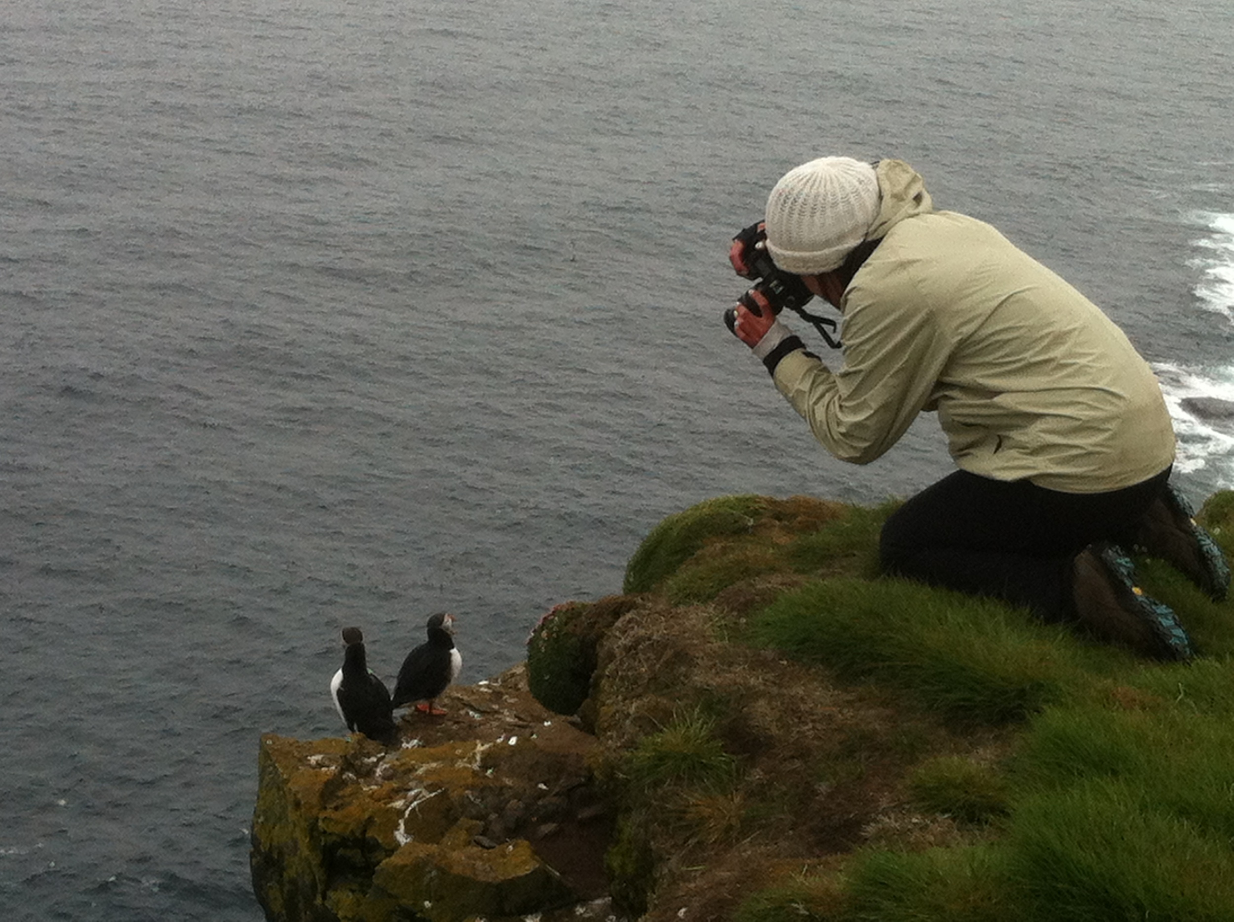Photo expert Madison loved the puffins
