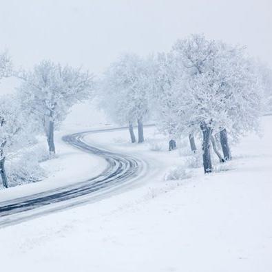 Weather policies -
