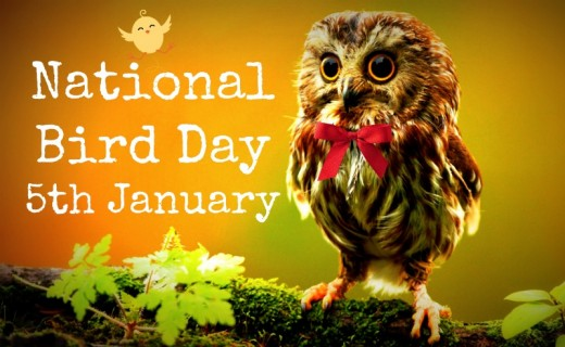National-Bird-Day-5th-January.jpg