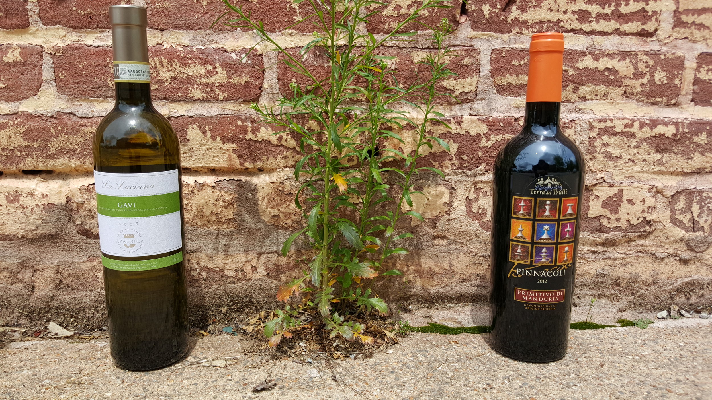 Even our wines are participating in #justawall!