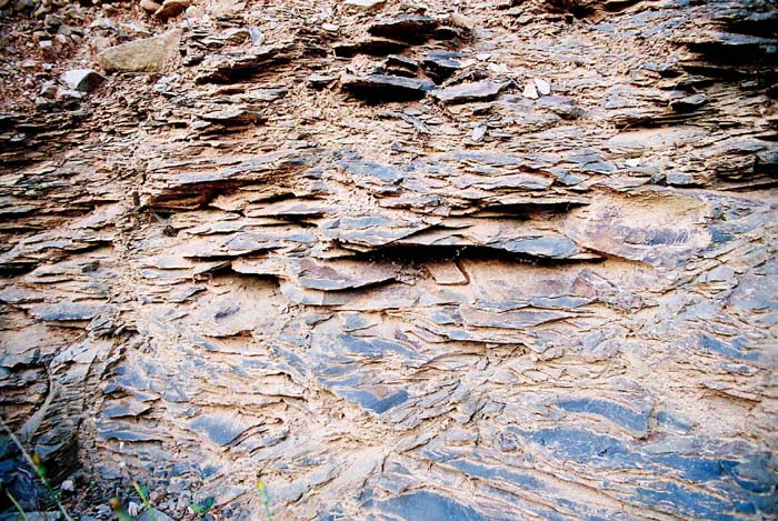 Metamorphic schist in Faugeres leading to strong minerality and pronounced acidity in the wine