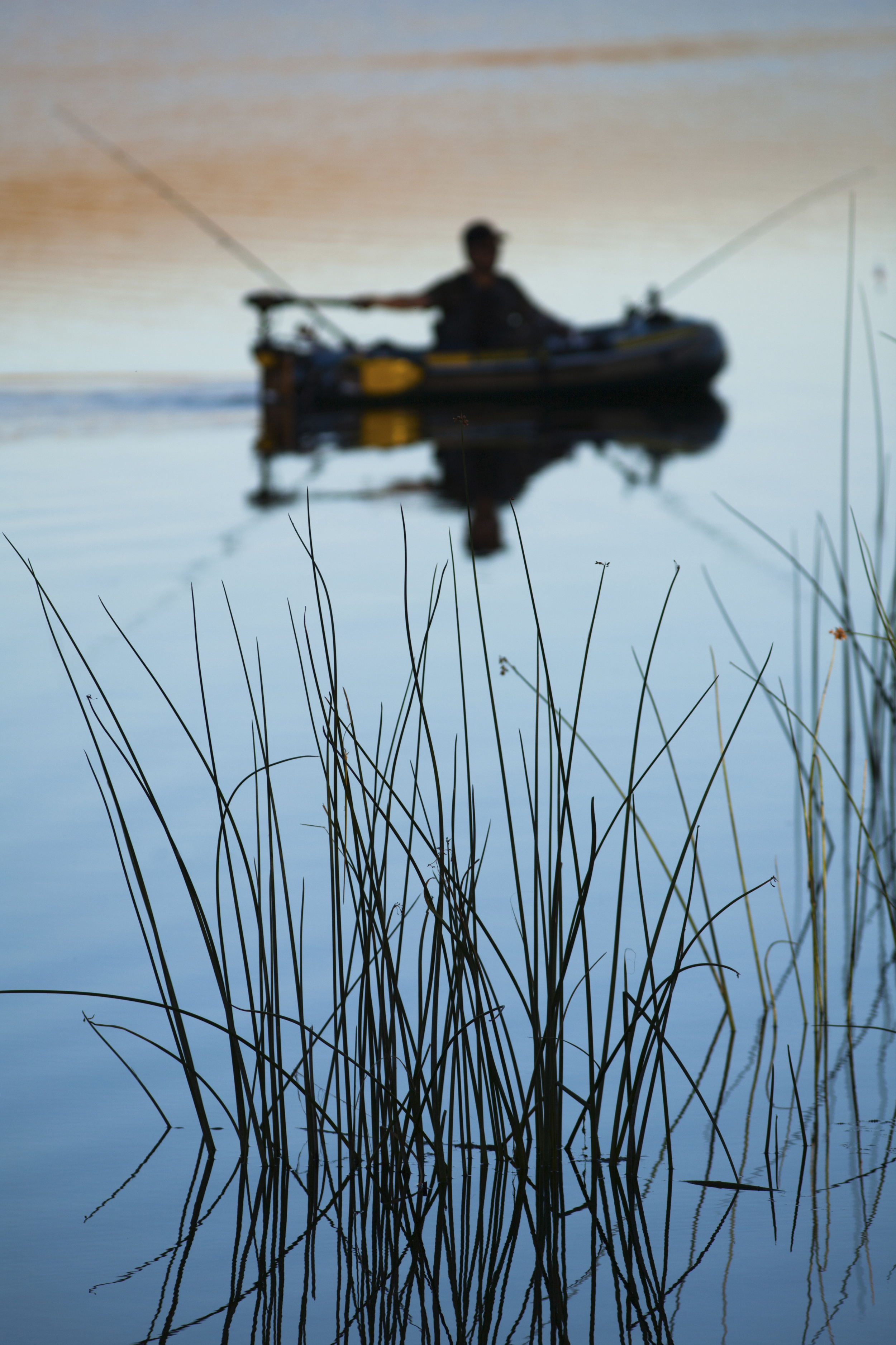 Water grass and fisherman