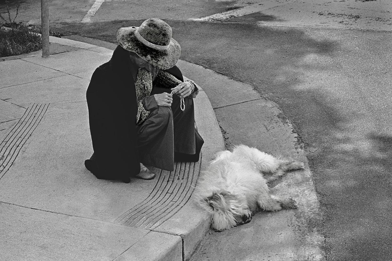 woman_prays_over_dog.jpg