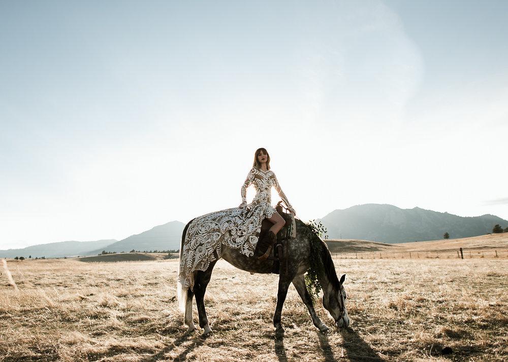 HorseShoot-27.jpg